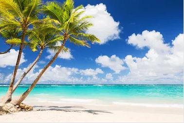 Tranh phong cảnh biển 72