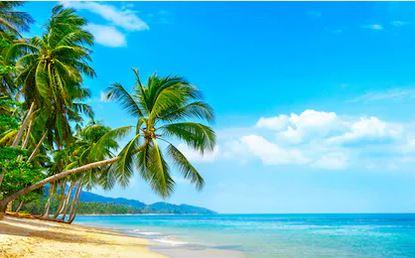 Tranh phong cảnh biển 75