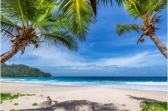 Tranh phong cảnh biển 79