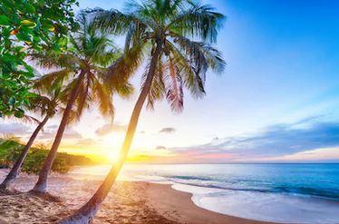 Tranh phong cảnh biển 83