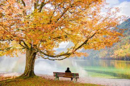 Tranh phong cảnh mùa thu 20