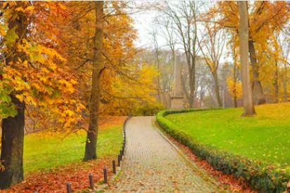 Tranh phong cảnh mùa thu 30