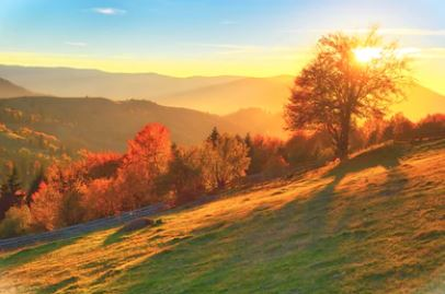 Tranh phong cảnh mùa thu 41