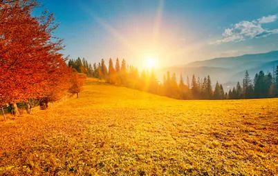 Tranh phong cảnh mùa thu 50