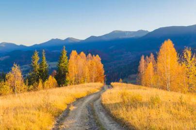 Tranh phong cảnh mùa thu 51