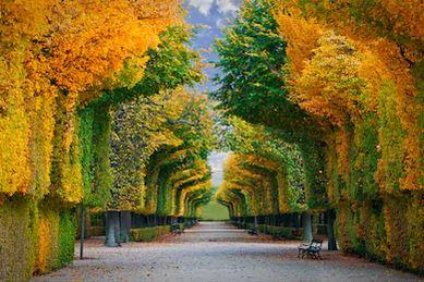Tranh phong cảnh mùa thu 52