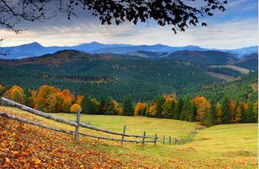 Tranh phong cảnh mùa thu 60