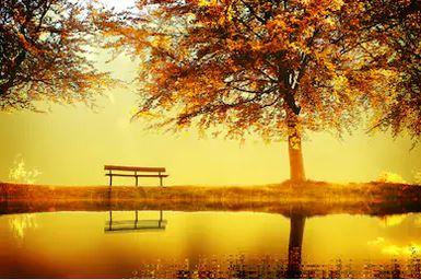 Tranh phong cảnh mùa thu 77