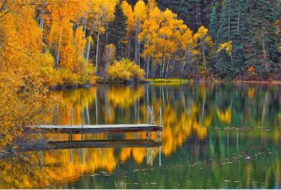 Tranh phong cảnh mùa thu 86
