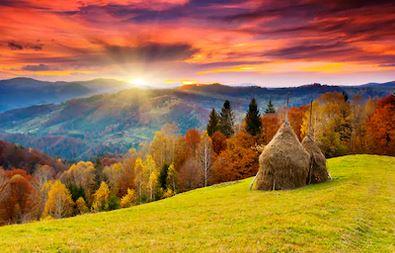 Tranh phong cảnh mùa thu 88