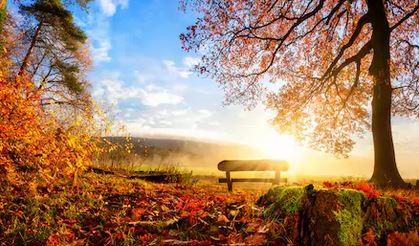 Tranh phong cảnh mùa thu 92