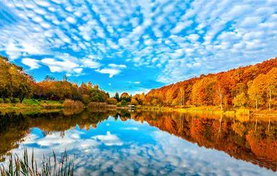 Tranh phong cảnh mùa thu 98