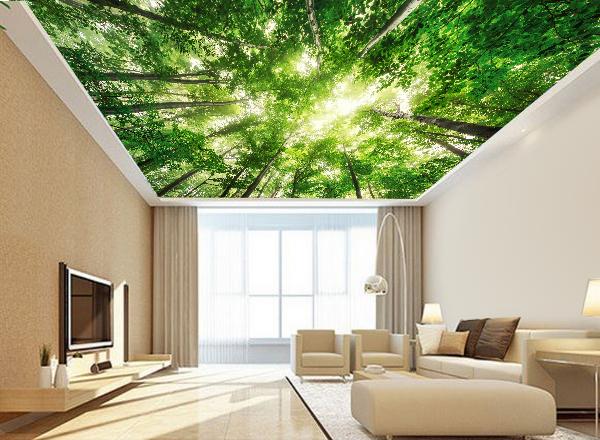 Tranh trần nhà - MS106