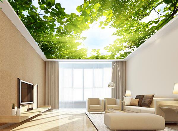 Tranh trần nhà - MS110
