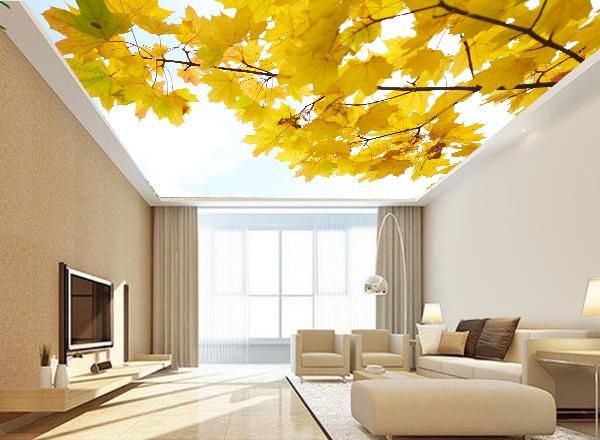 Tranh trần nhà - MS111