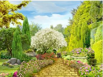 Tranh vườn hoa - TVH54