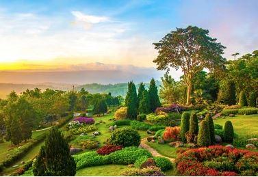 Tranh vườn hoa - TVH57