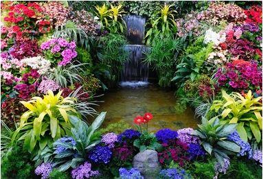 Tranh vườn hoa - TVH62