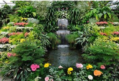Tranh vườn hoa - TVH64