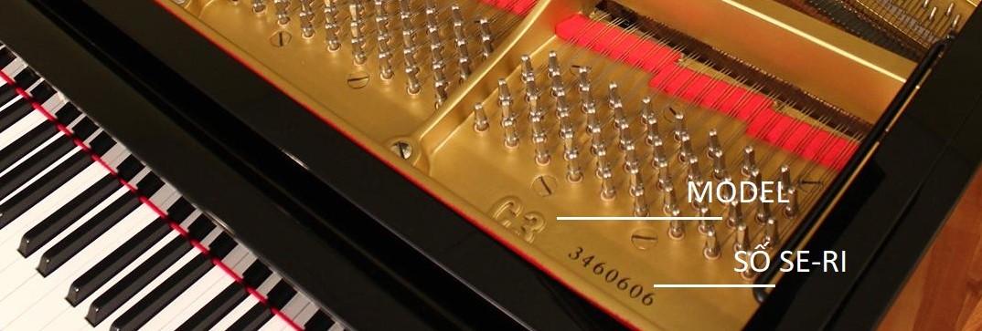 Model và số seri trên đàn piano Grand Yamaha