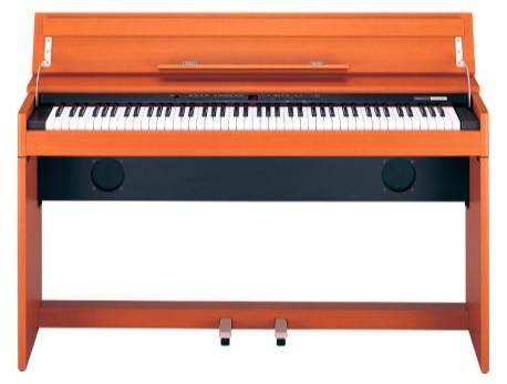 Roland DP 900