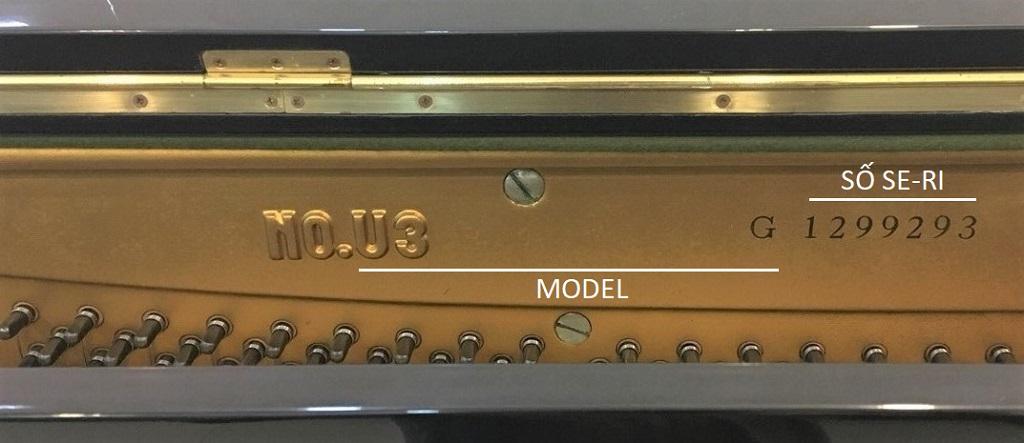 Model và số seri trên đàn piano Yamaha