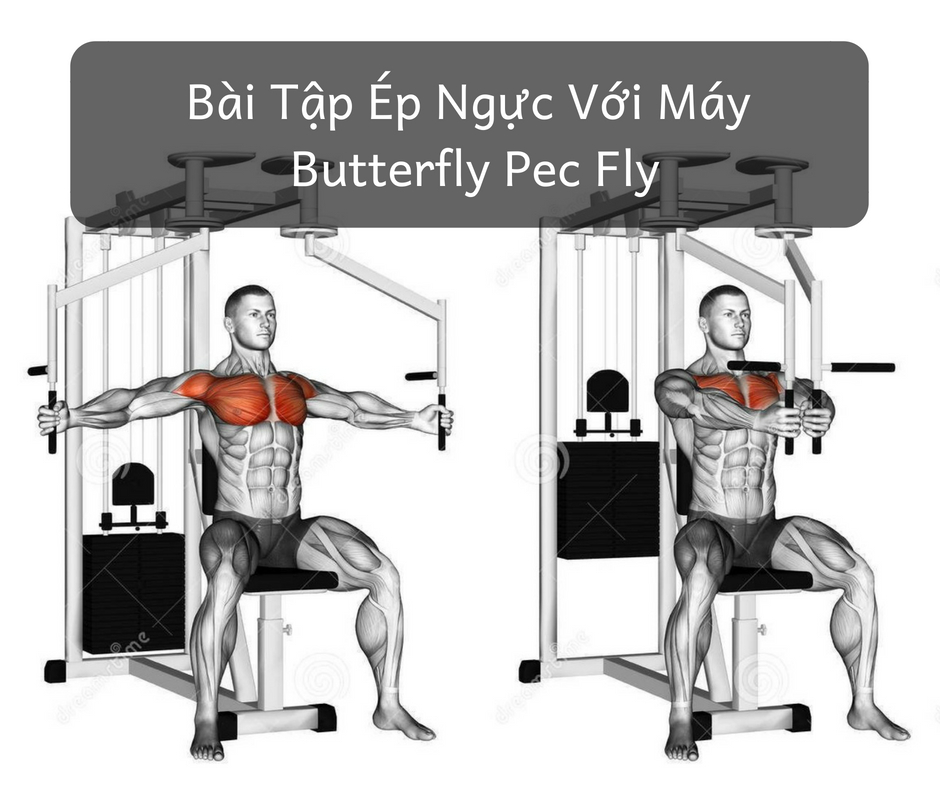 lich tap gym giam can butterfly