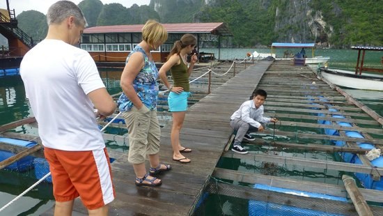 Visit Pearl Farm Village with Signature Ha Long Cruise