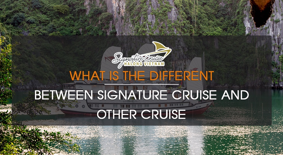 What is the different between Signature Cruise and other Cruise?