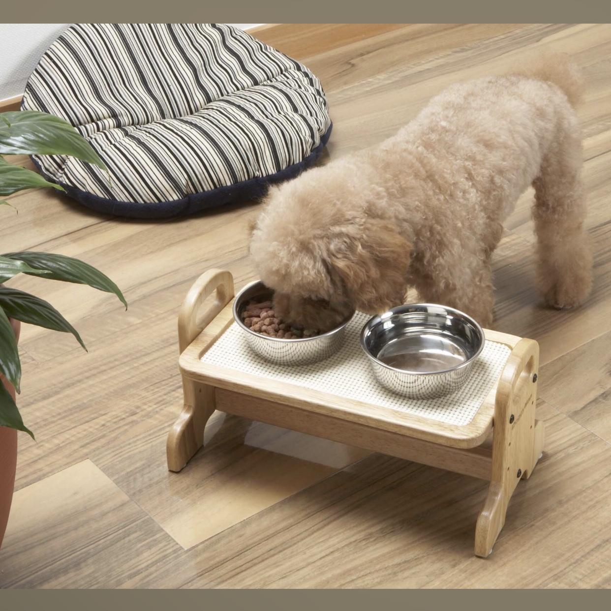 Bàn Ăn Cho Cún Mèo DoggyMan [Size S 35x21x18cm]