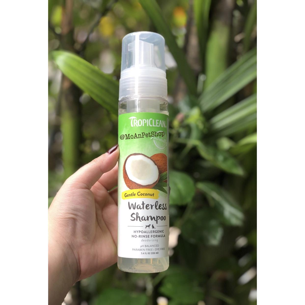 Sữa tắm khô TROPICLEAN Waterless Shampoo Hypoallergenic [Dạng bọt foam] 220ml