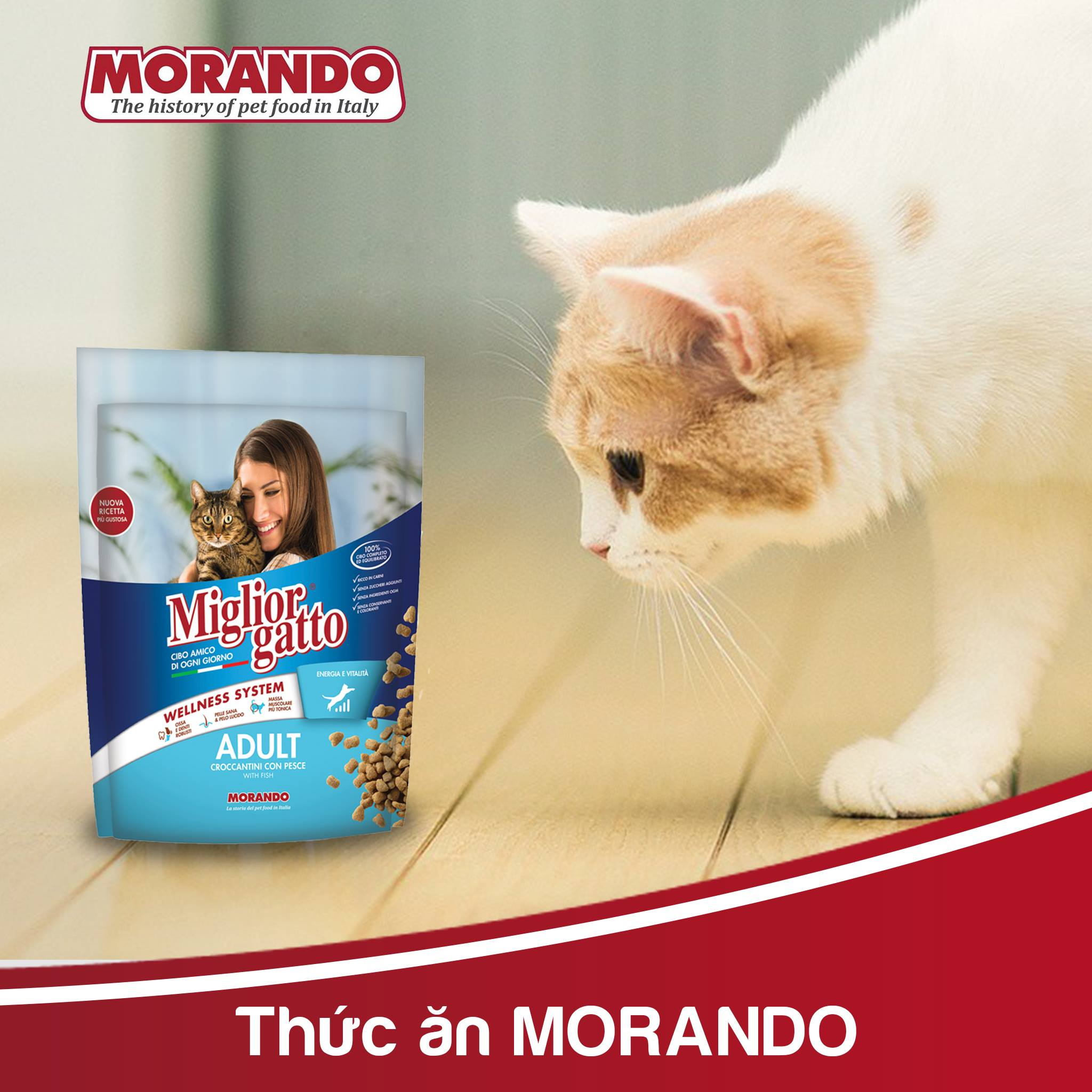 Hạt Mèo Morando Miglior Gatto Mèo Adult 400g