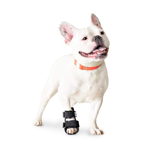Nẹp Chân Cún Mèo [Chân Trước] Walkin' Pet Splint - Canine Bootie Style