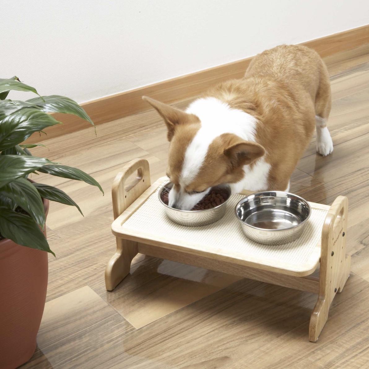 Bàn Ăn Cho Cún Mèo DoggyMan [Size M 42x26x22cm]