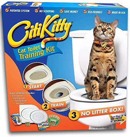 Bộ Hướng Dẫn Mèo Đi Vệ Sinh Trên Toilet