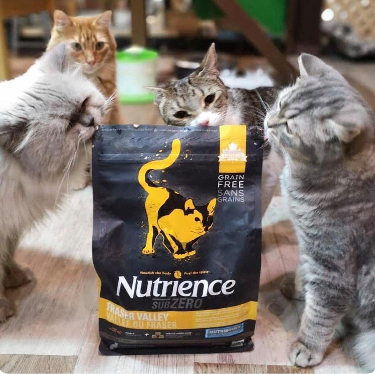 Hạt Mèo Nutrience SUBZERO Thịt Gà, Cá Hồi, Cá Trích, Rau Củ & Trái Cây 2.27kg