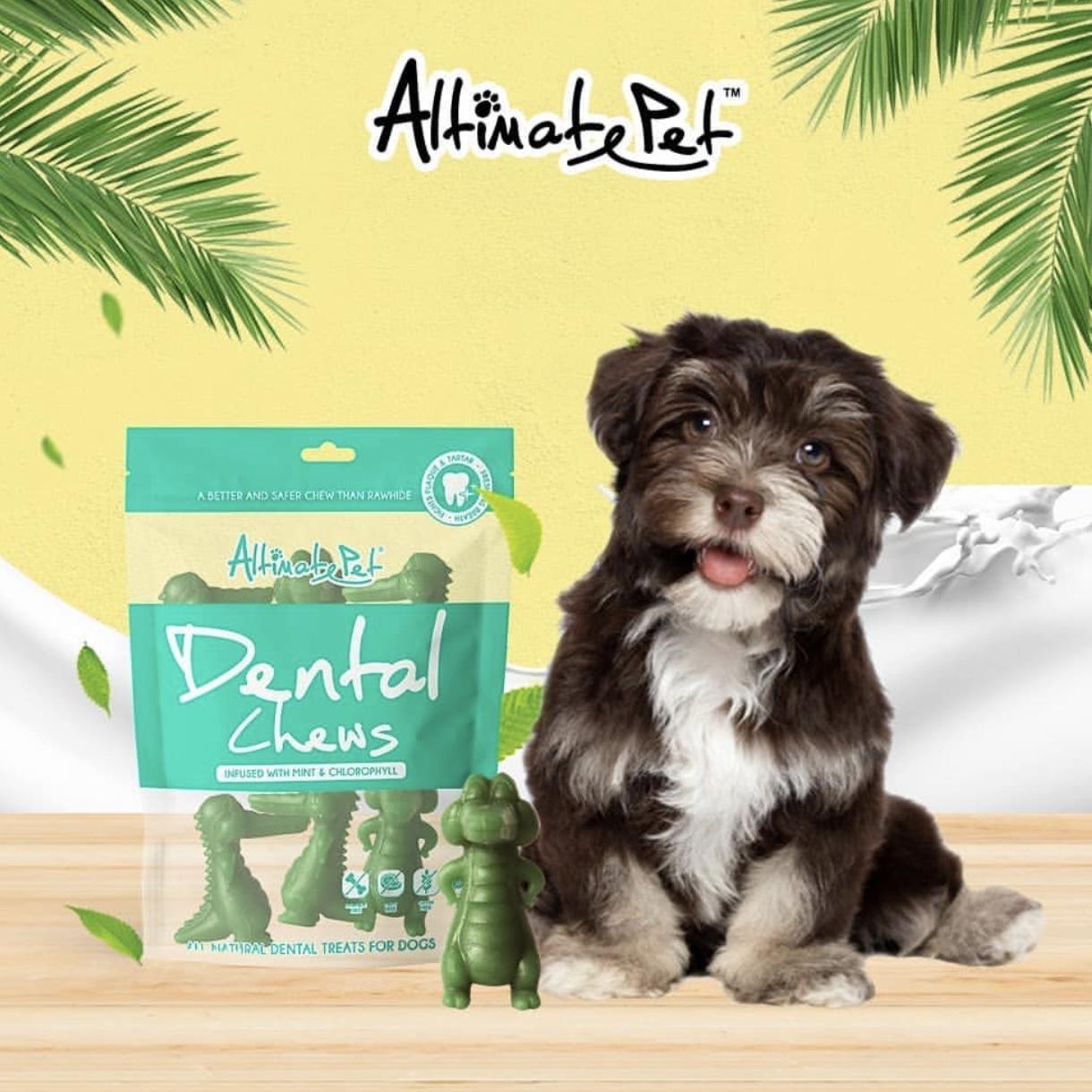 Xương Gặm Sạch Răng Altimate Pet Dental Chews Mint Bạc Hà [Hình Cá Sấu 6 Xương]