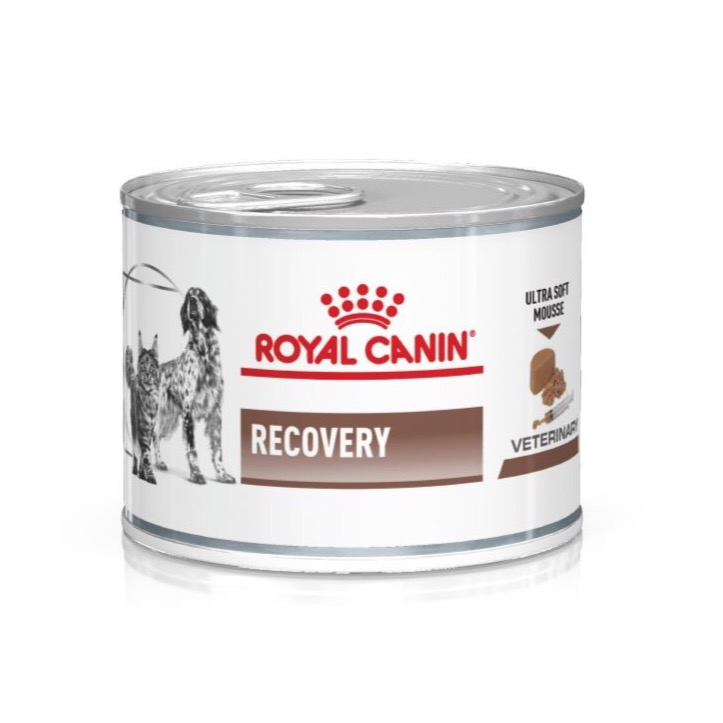 Pate ROYAL CANIN RECOVERY - PHỤC HỒI 195g
