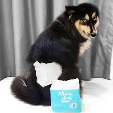 Tã Quấn | Tã Vệ Sinh Bé Trai Altimate Pet Male Wrap size GIANT 28-40kg (Gói 7 tã)
