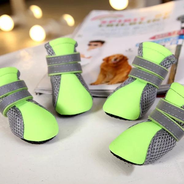 Giày [Mẫu Dạ Quang]