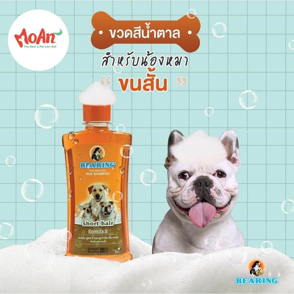 Sữa Tắm Gội BEARING Thái Lan Diệt Ve Rận & Bọ Chét [Short hair - Lông ngắn]