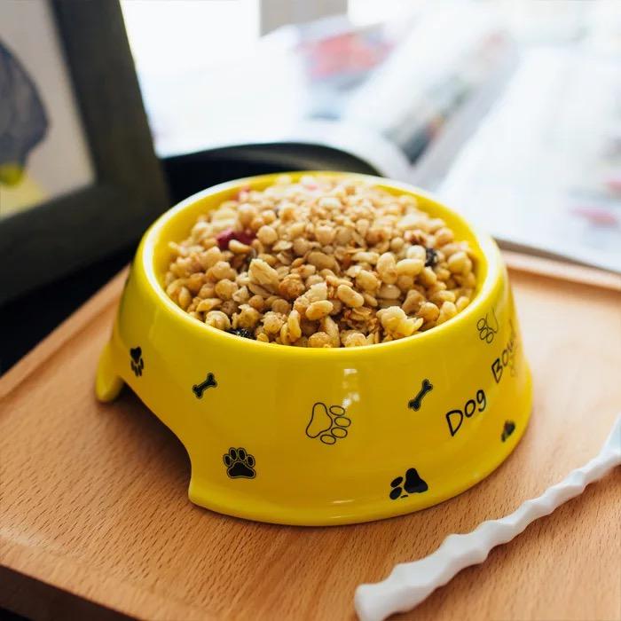 Tô | Chén sứ cao cấp Dog Bowl 15cm