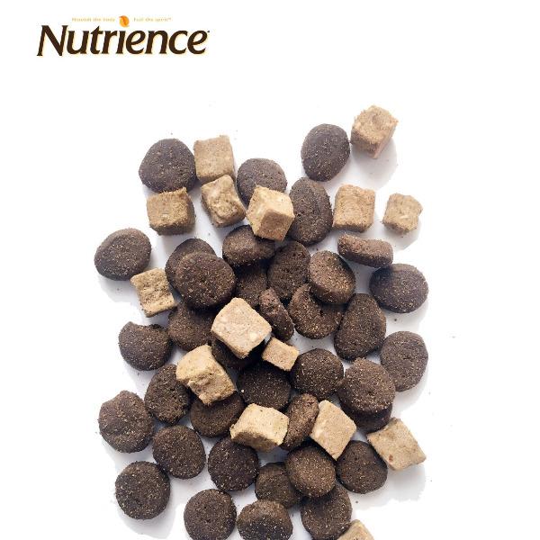 Nutrience SUBZERO Thịt Bò, Cá Hồi & Rau Củ Quả cho Cún (Mọi độ tuổi) 50g