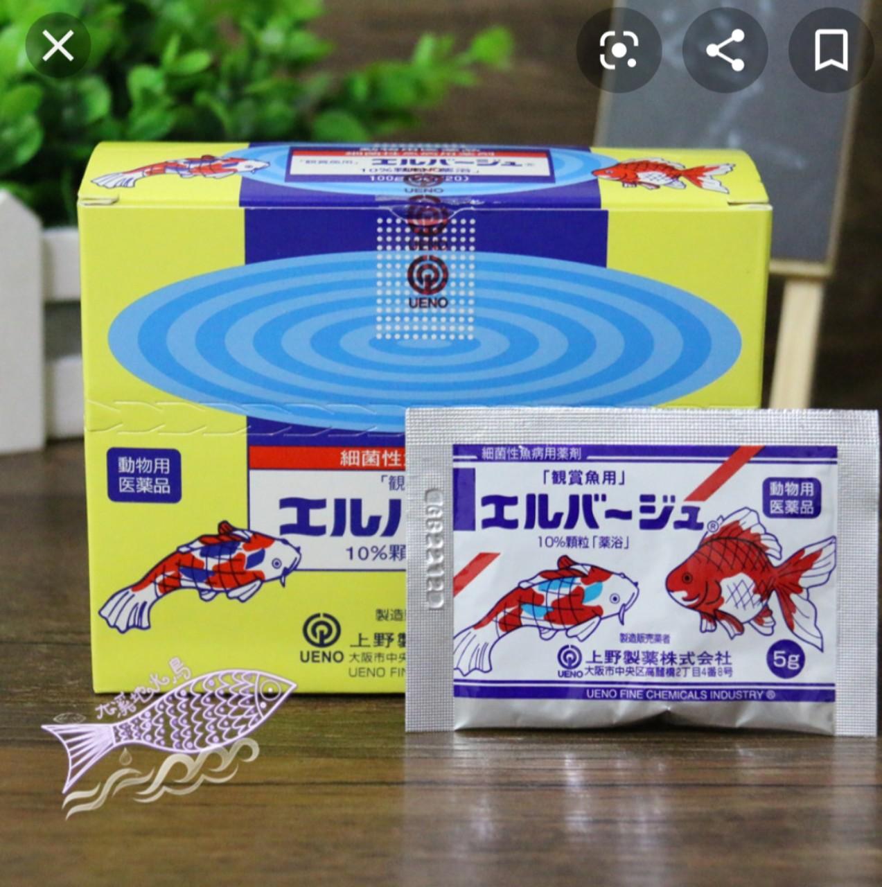 Thuốc Tetra Nhật, thuốc chữa nấm cho cá,dưỡng và khử khuẩn nước