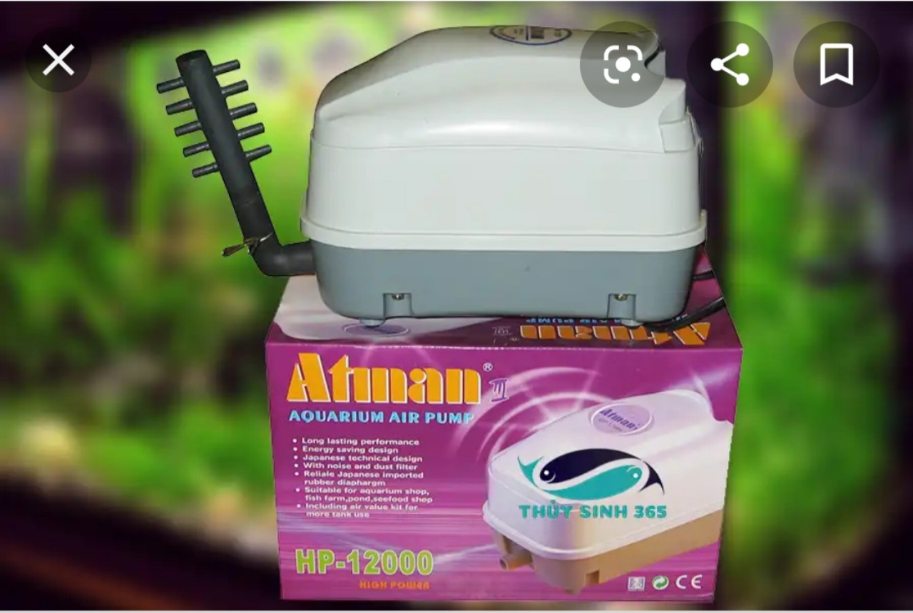 Máy sục khí hồ koi Atman HP 4000 – HP 8000 – HP 12000