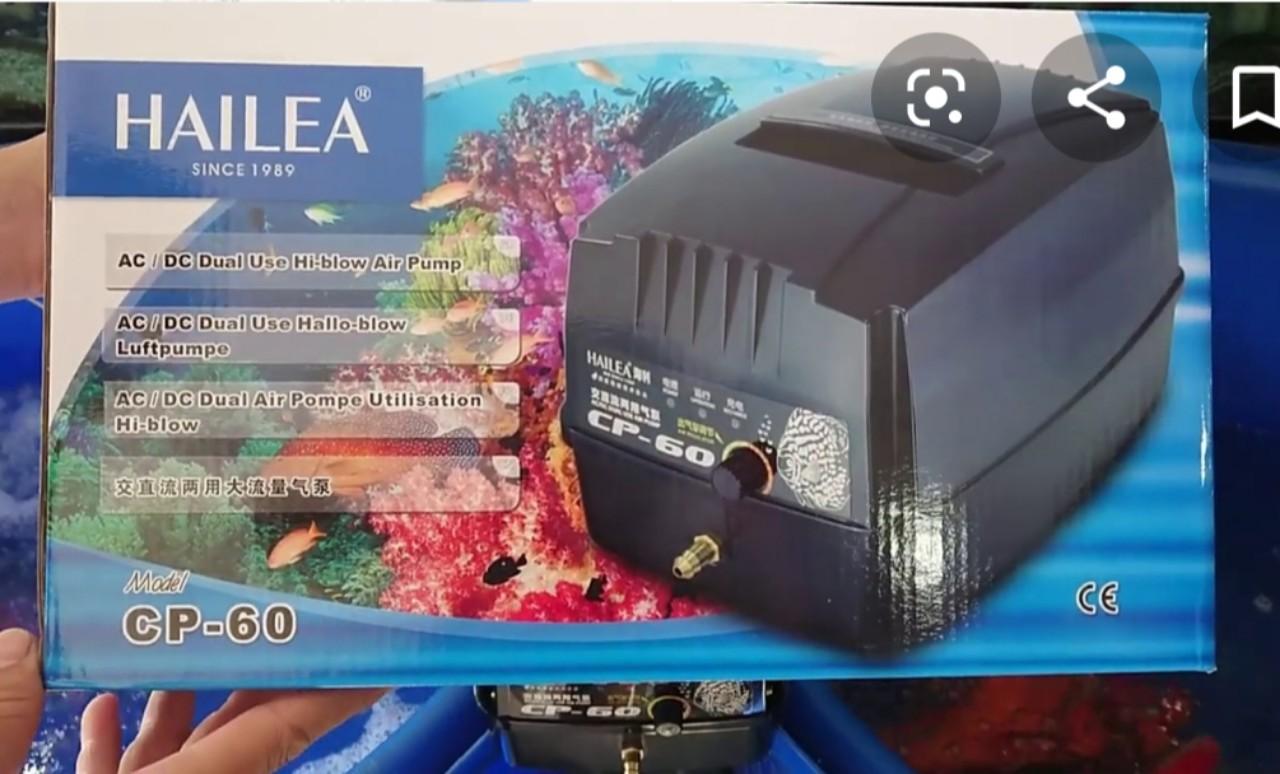 Máy sủi tích điện hồ Koi Hailea CP: CP 60 - CPA 120 -  CPA 150