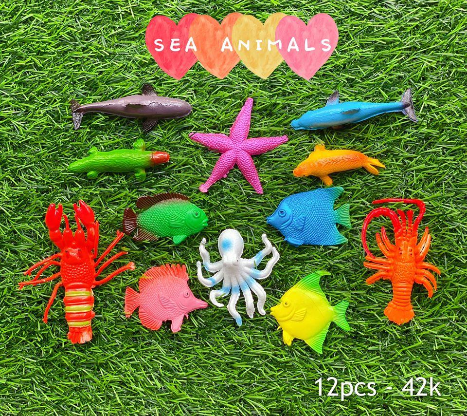 🐠Bộ sinh vật biển - SEA ANIMALS 🐠