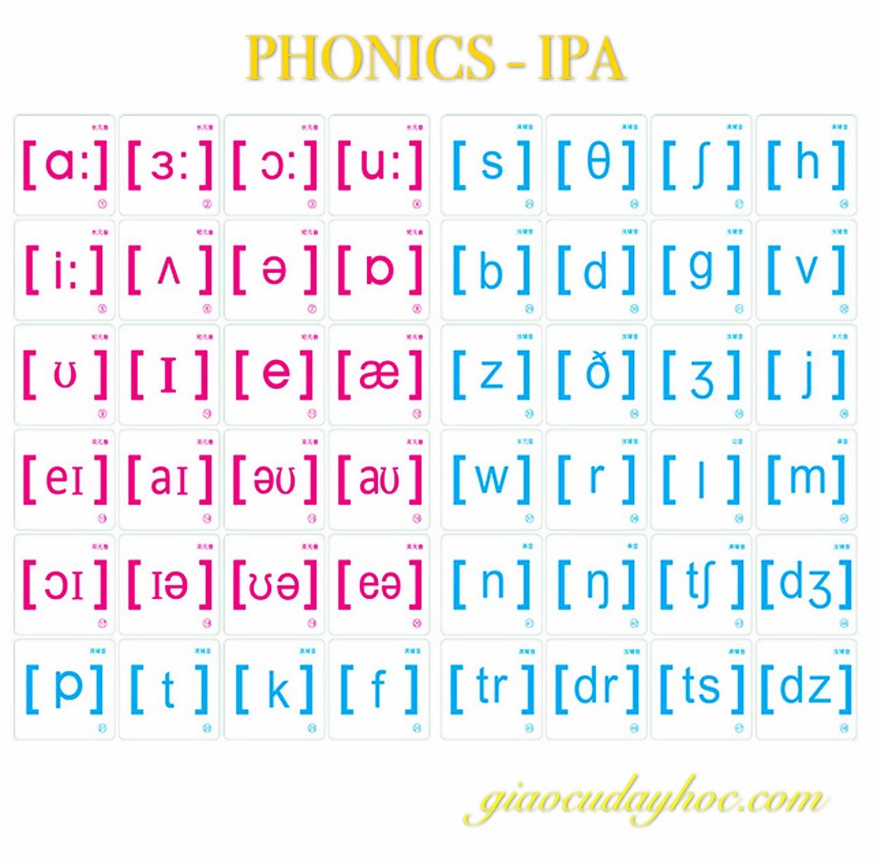 BỘ NAM CHÂM PHONICS