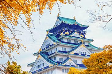 Nhật Bản - 5 Ngày 4 Đêm Ngắm Lễ hội Hoa Anh Đào