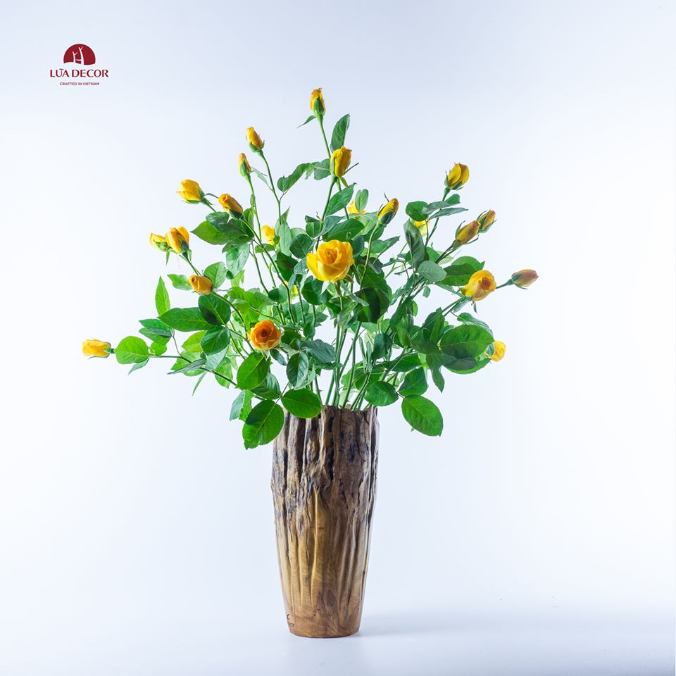 Today's flower @LŨA DECOR - Tết Thanh Minh